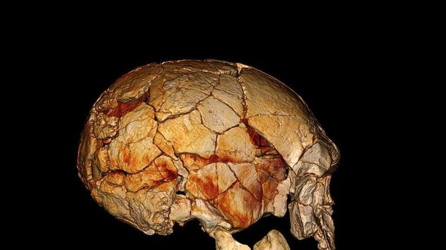 Investigadores de la UPV estudian si los humanos del paleolítico eran diestros o zurdos