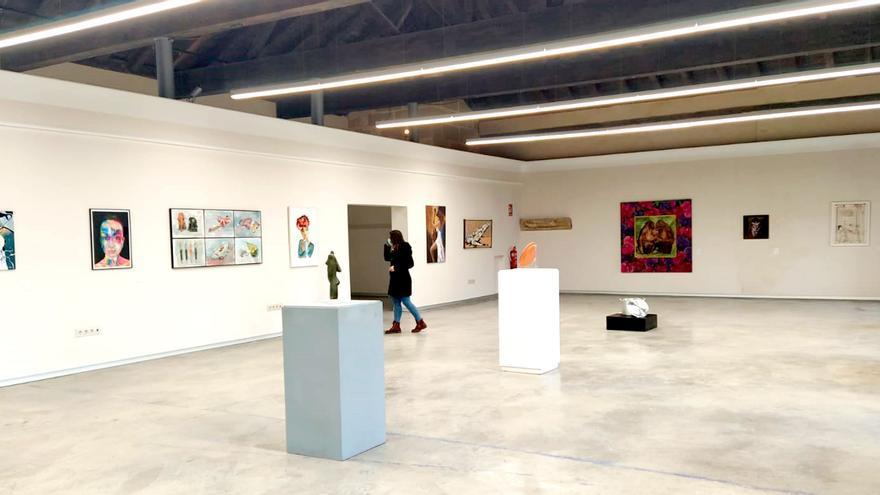 Organizan exposiciones, visitas guiadas o talleres en Castilla-La Mancha con motivo del 8M