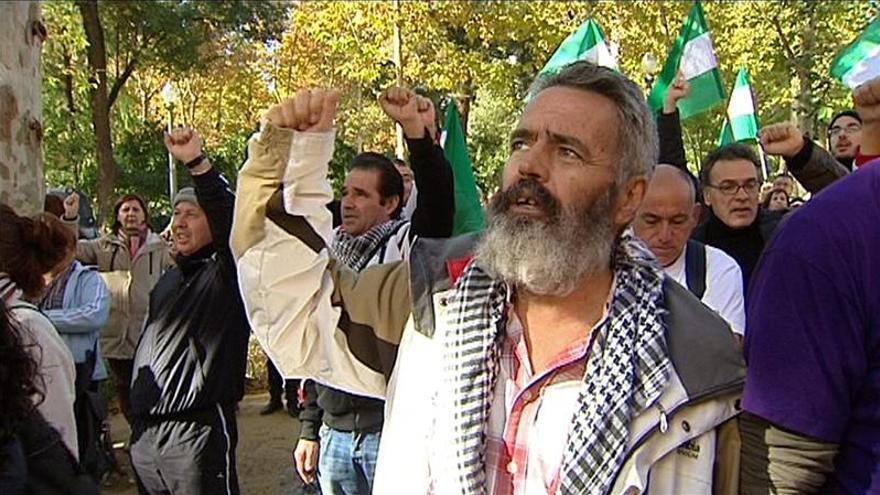 Gordillo y Cañamero no asisten al juicio y niegan delitos por ocupación de finca