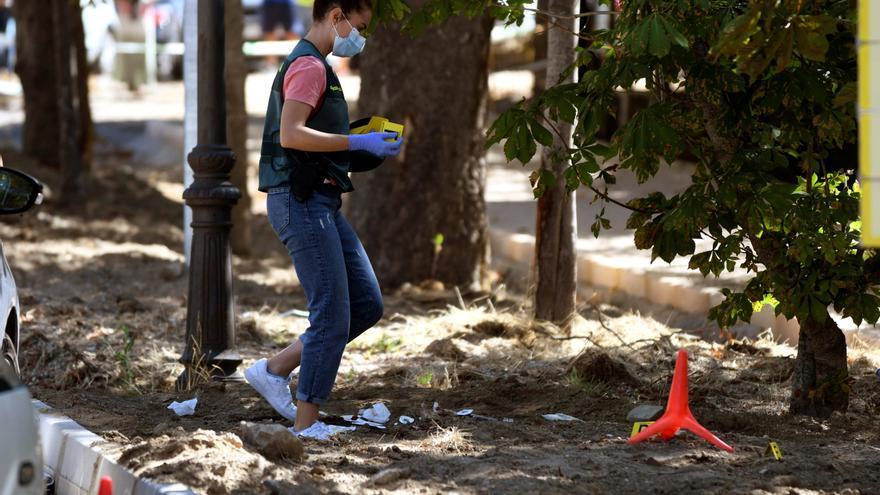 Una mujer muere tras ser apuñalada por su expareja en La Granja (Segovia)
