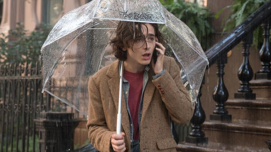 Timothee Chalamet es Gatsby en lo nuevo de Woody Allen