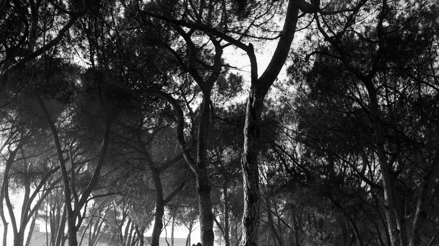 Don Pío Baroja paseando por el parque del Retiro