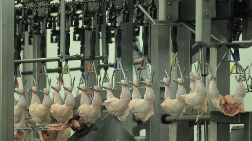 La brasileña JBS retoma su producción al 35 % tras detenerla por escándalo de carne