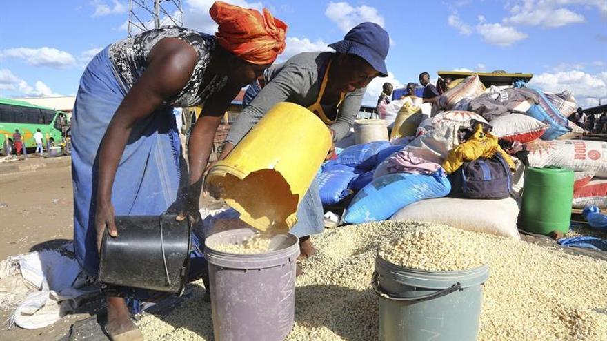 Los países africanos que invierten en agricultura aumentan su PIB, según un estudio