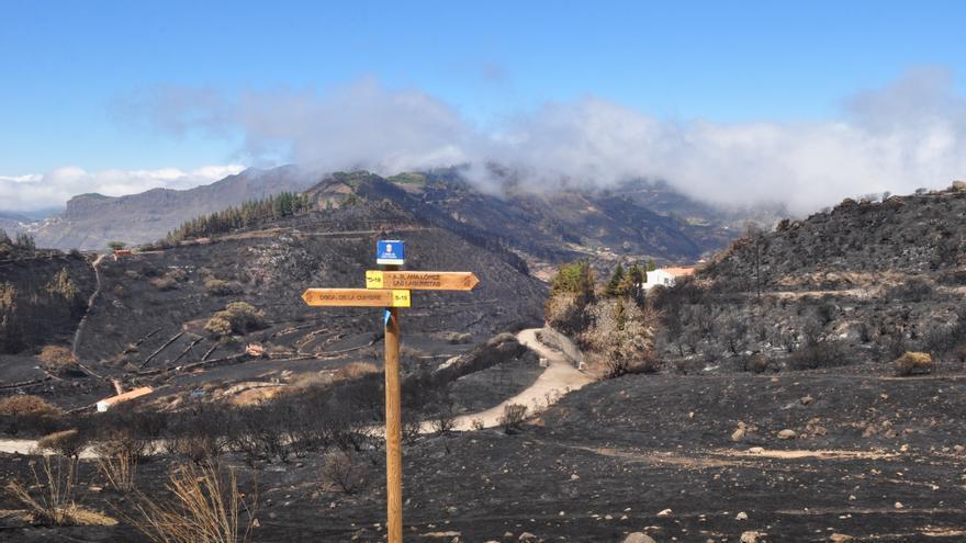 Cumbre de Gran Canaria calcinada