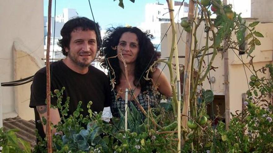Los huertos urbanos germinan en canarias for Huerto en azotea