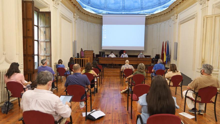 Reunión del Consejo Navarro de Salud para analizar la influencia de la pandemia en el servicio sanitario