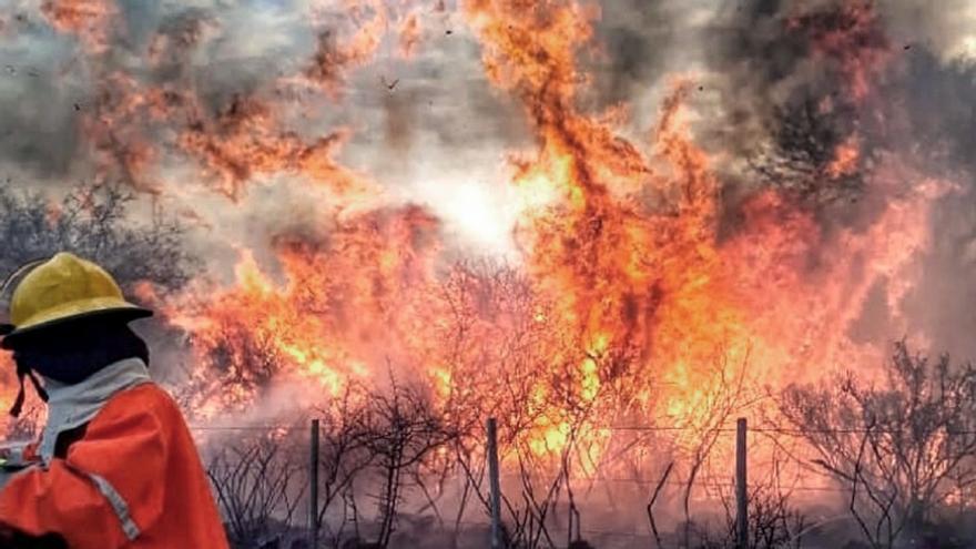 En Córdoba, el fuego arrasó con más de 350 mil hectáreas.