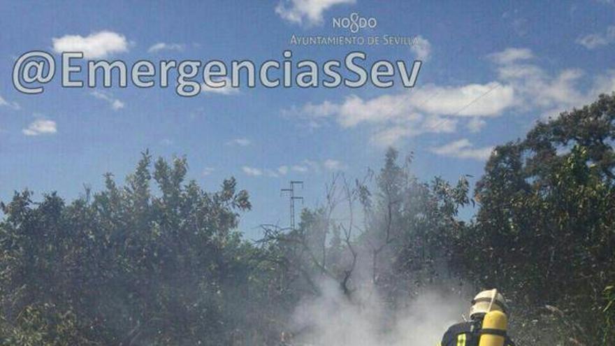 Rescate del ultraligero accidentado en el aeropuerto de Sevilla.: /FOTO: emergencias Sevilla