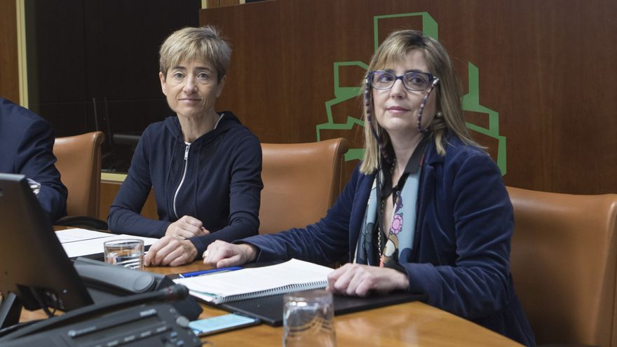 Cuevas, en su comparecencia en el Parlamento Vasco