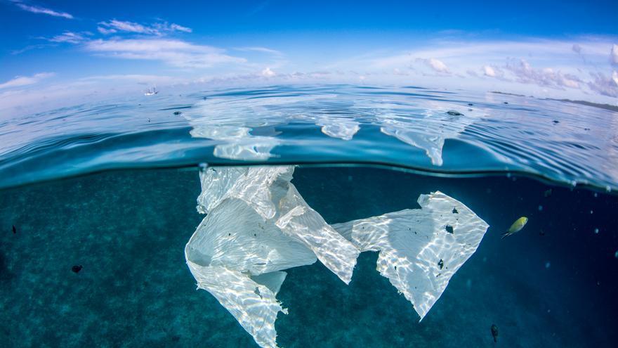Una bolsa de plástico en mitad del océano