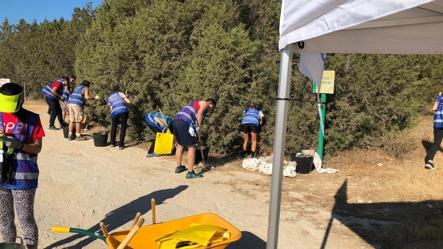 """Casi 2.000 voluntarios limpian de """"basuraleza"""" 68 espacios naturales de Andalucía"""