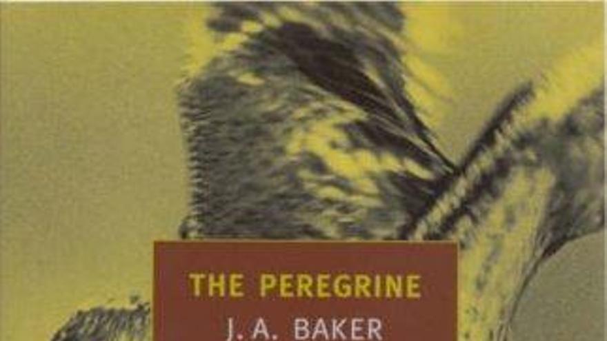 El Peregrino, de J. Baker
