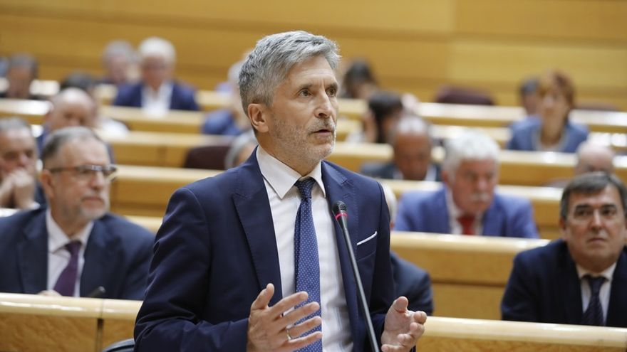 """El PP afea en el Senado el """"cese político"""" del jefe de la UCO y Marlaska promete explicarse cuando resuelva el recurso"""