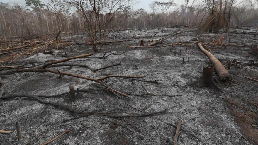 Los fuegos descontrolados en esta área de transición entre el Chaco y la Amazonía comenzaron hacia mediados del pasado agosto, cuando llegaron a superar los 8.000 focos activos.
