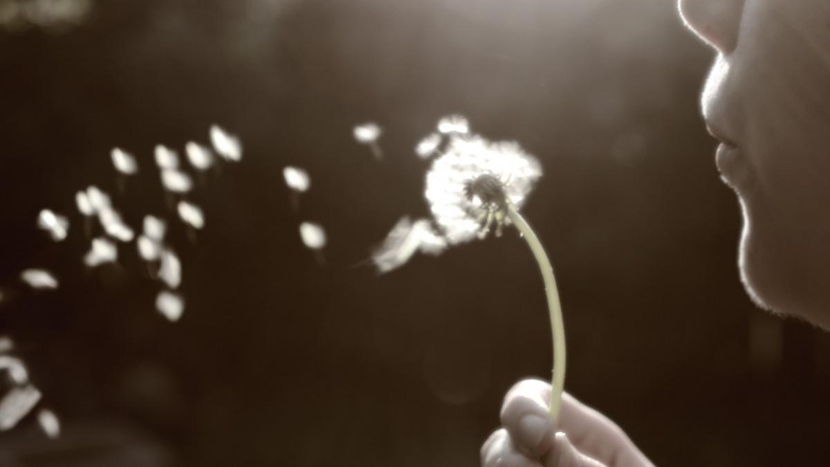 Si pedimos que los deseos se cumplan es porque no solo sabemos que no se van a cumplir, sino para reprimir que la relación con el deseo supone otro tipo de acto antes que la satisfacción