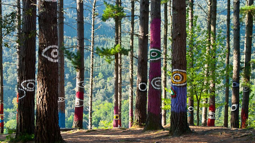 El bosque de Oma, en la Reserva de Urdaibai, en Bizkaia.