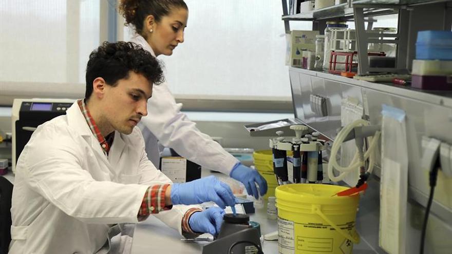 Un laboratorio en imagen de archivo / EFE