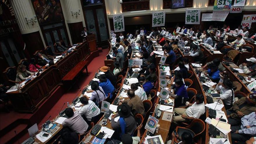 La oposición anuncia una batalla internacional contra la reelección de Evo Morales