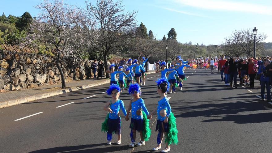 Imagen de archivo del coso del Carnaval de Puntagorda del año 2016 Foto cedida por el Ayuntamiento de Puntagorda.