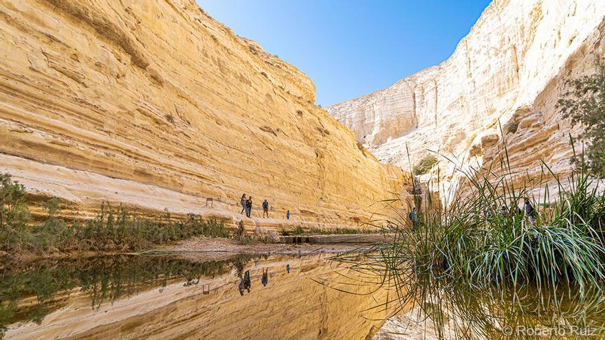 Ein Avdat, desierto del Néguev, Israel