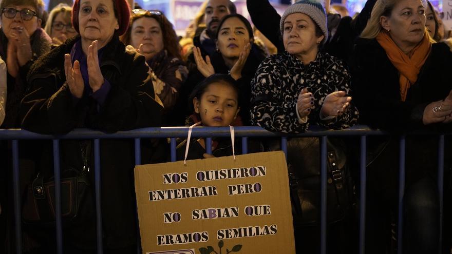 """""""Nos quisieron enterrar pero no sabían que éramos semillas"""". Una de las pancartas portadas por las manifestantes en la marcha del 25N en Madrid"""
