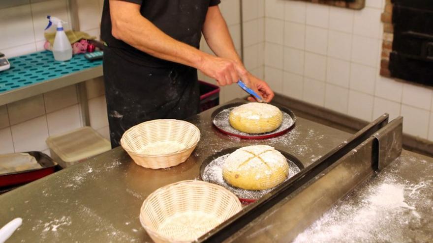 Elaboración de pan redondo. (Alejandro Ramos).