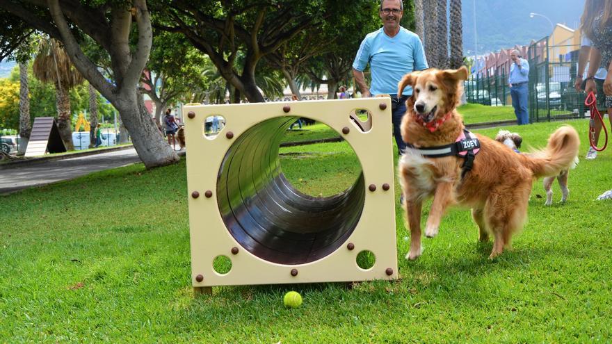 Parque para perros en el polígono de San Jerónimo