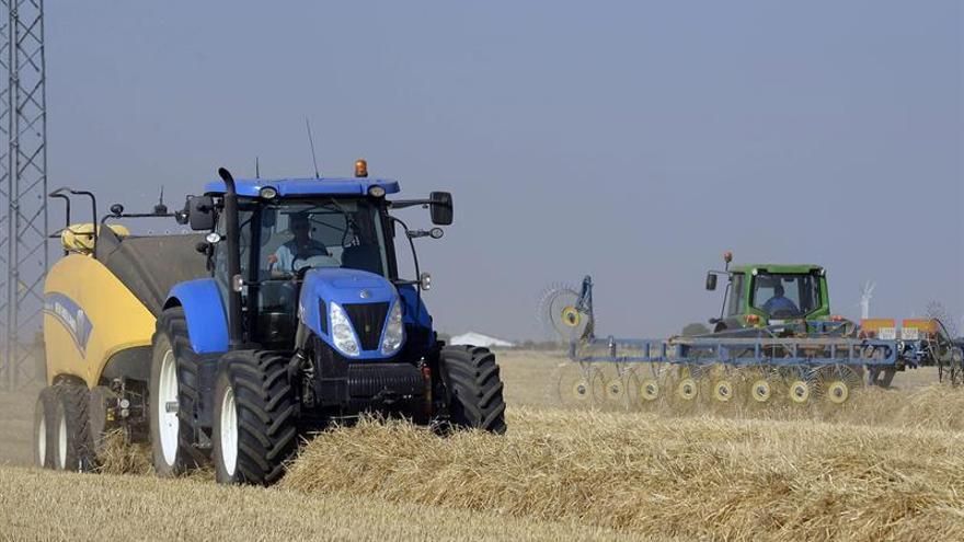 Demanda de alimento crecerá más lentamente la próxima década, dice FAO y OCDE