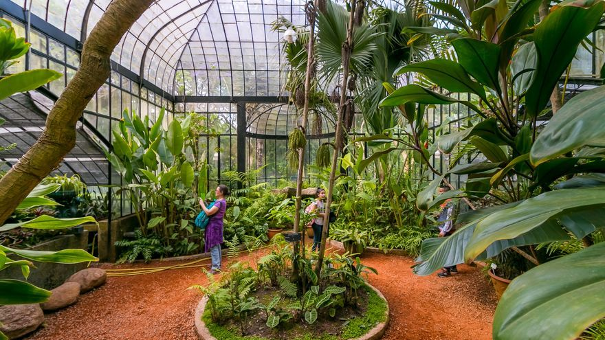 Imagen de archivo. Un invernadero de un Jardín Botánico.