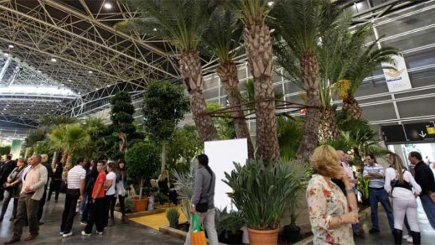 Imagen de archivo de una edición de Iberflora, en Valencia