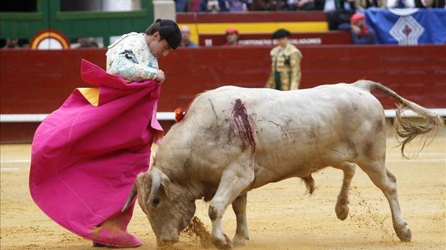 Notable debut con picadores de Varea: oreja de peso en novillada de Castellón