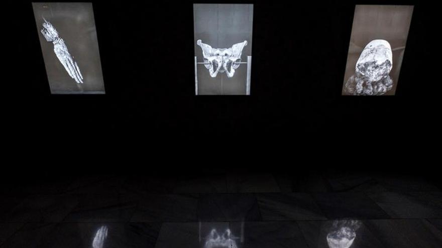Algunas instantáneas de la muestra 'Hablando de pájaros y flores' que se expone en el Centro Atlántico de Arte Moderno.