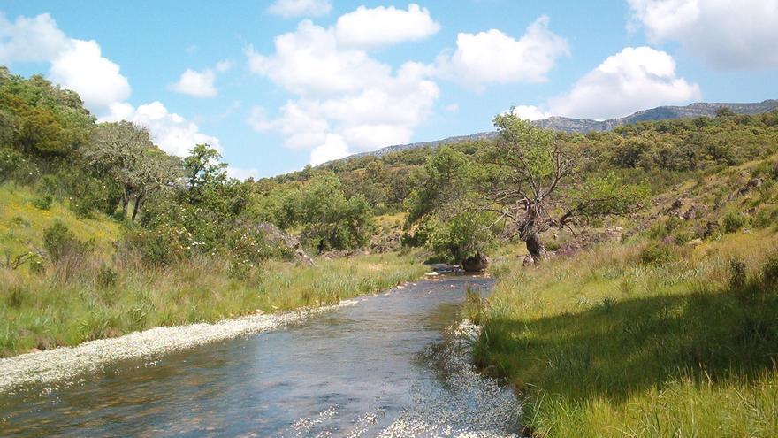 Río Júcar / ASAJA