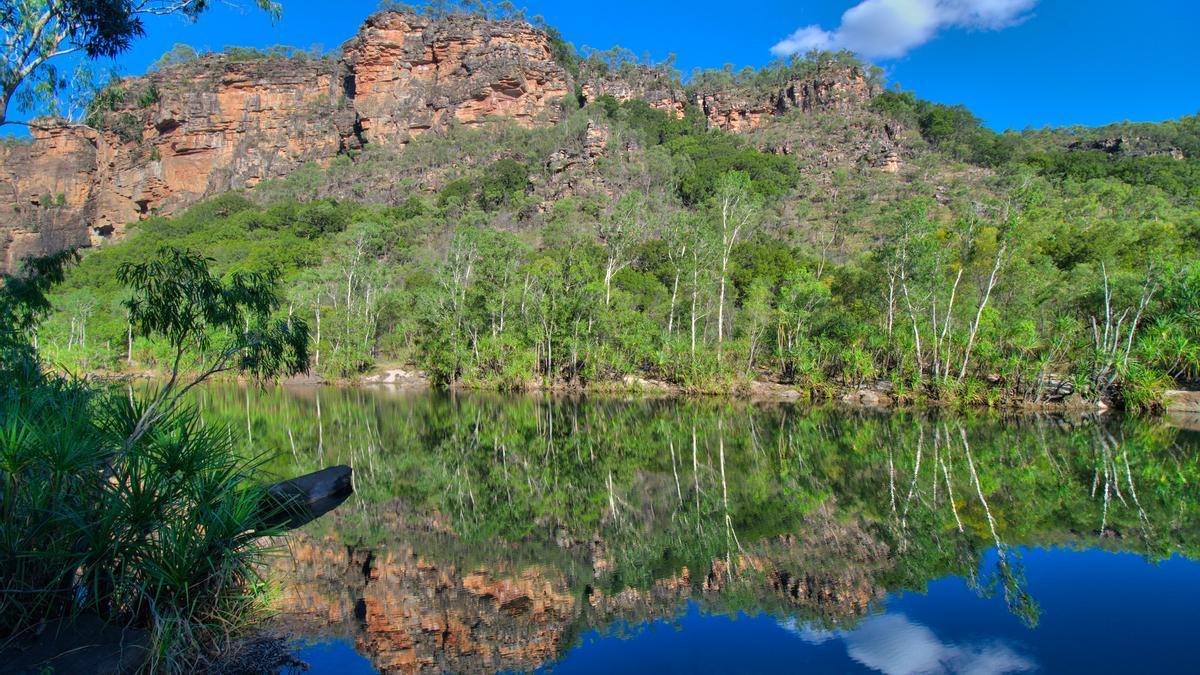 Agua, bosque y roca. Los elementos que conforman el Parque Nacional de Kakadu.