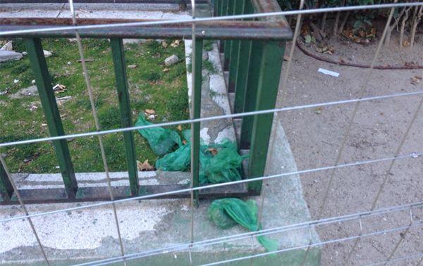 Bolsas con excrementos caninos acumuladas en la Plaza de la Villa de París | Fotografía: Paco Ballesteros