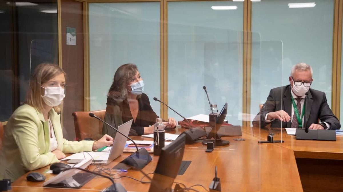 Alba Urresola y Rafael Iturriaga, este martes en el Parlamento Vasco