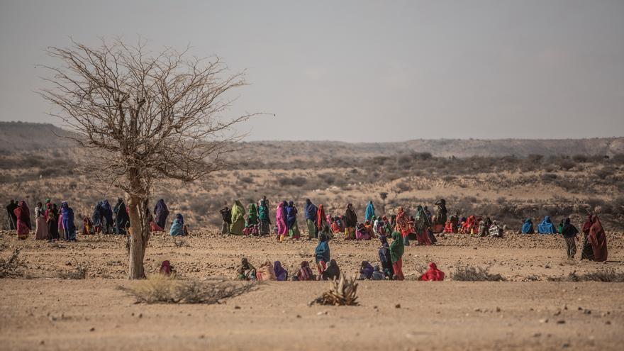 Miles de personas llegaron al campo de personas desplazadas de Dar Agg después de haber perdido todos sus animales y peregrinar por el desierto hasta encontrar este valle que cuenta con una escasa fuente de agua. Foto: Pablo Tosco / Intermón Oxfam