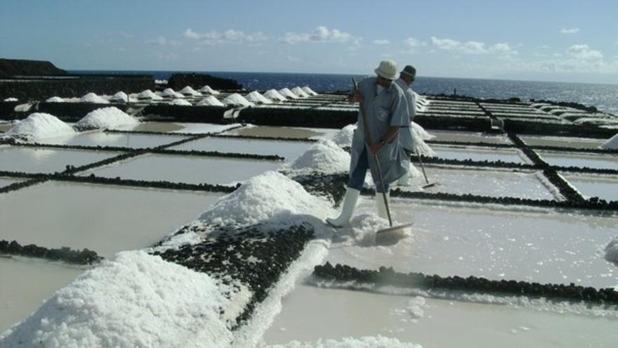 De la zafra de sal en La Palma #2