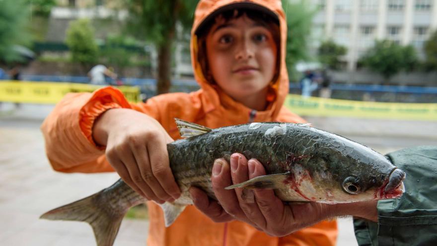 Campeonato de pesca. Orereta. Julio 2016.