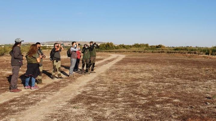 Observación de aves en Villacañas