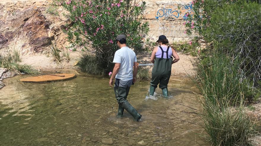 Voluntarios llevando a cabo el muestreo en las aguas de la rambla