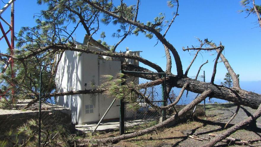 En la imagen, pino tumbado por el viento en la noche de pasado domingo sobre una caseta de comunicaciones de Fuencaliente. Foto: Facebook del Ayuntamiento de Fuencaliente,