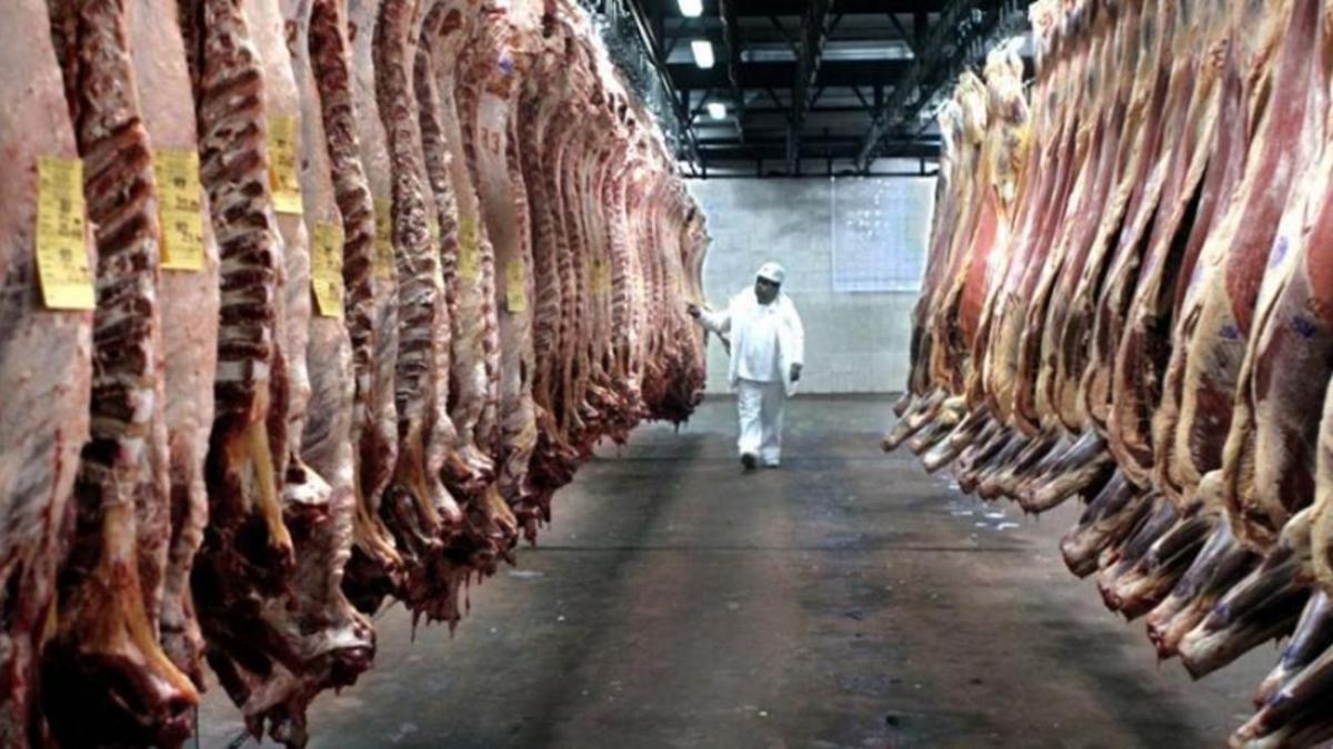 En la larga historia frigorífica de la Argentina, Kirchner había sido el único presidente en cerrar las exportaciones de carne. Se le sumó Alberto Fernández.