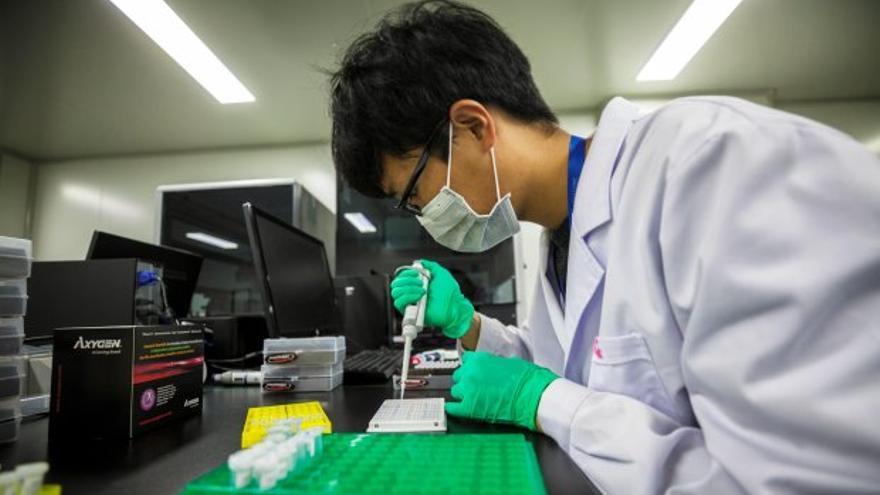 LA comunidad científica debate cómo limitar los experimentos de edición genética