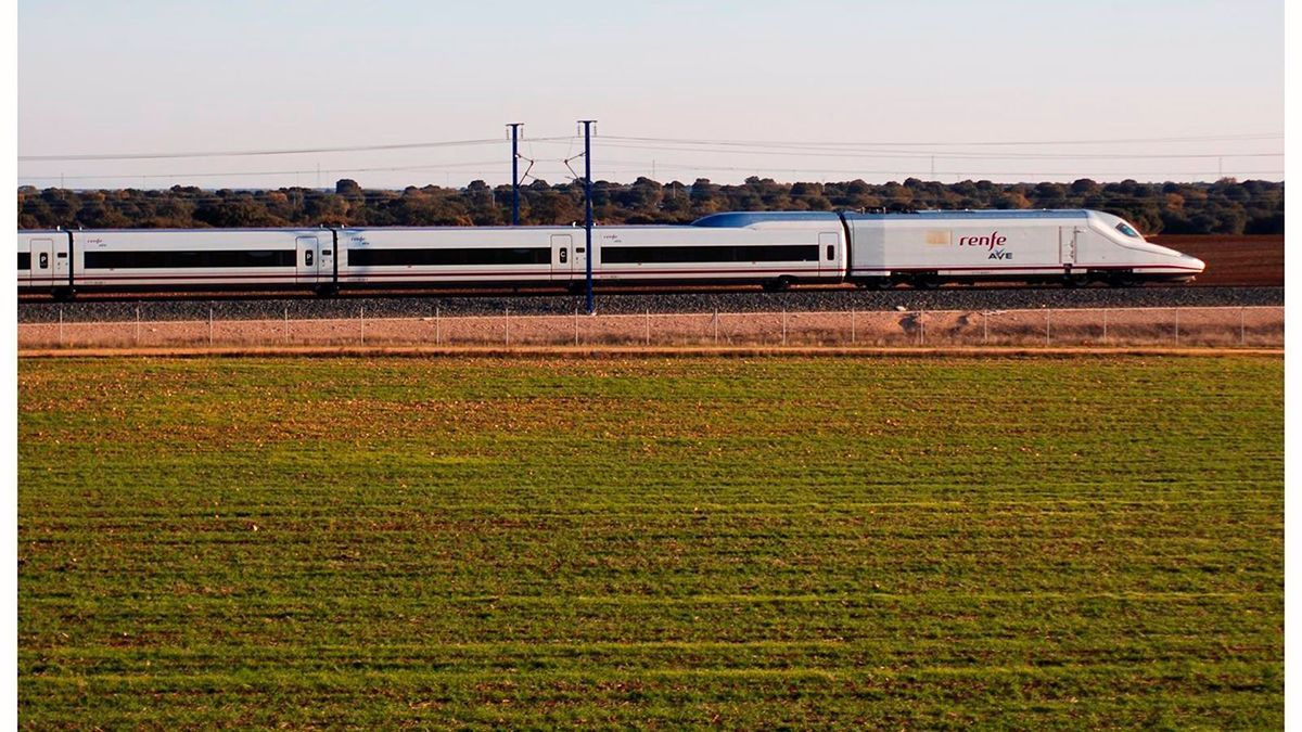 Un tren AVE.