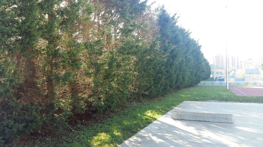 Camargo mejorará la seguridad entre el Parque de Cros y las vías del tren con un vallado metálico tras los árboles