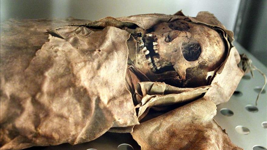 Lo que cuentan los huesos guanches: dedos de costurera y marcas de pastores