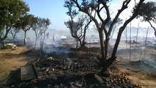 PSOE e IULV-CA de Lepe lamentan el incendio del asentamiento y las condiciones en las que viven los inmigrantes