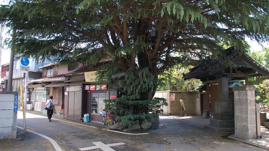 Calle del barrio de Yanaka, un reducto tradicional de Tokio. m-louis